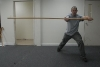 Wing chun 6 1/2 Point Pole